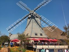 """See 29 photos and 14 tips from 280 visitors to Meerhof Windmill Restaurant. """"Hake and fish mutch better than Ocean basket. Love the food at Windmill. Windmill, Four Square, Utility Pole, Fair Grounds, Ocean, Restaurant, Travel, Viajes, Diner Restaurant"""