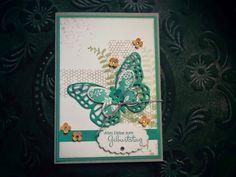 .....Schmetterlingsgruß....