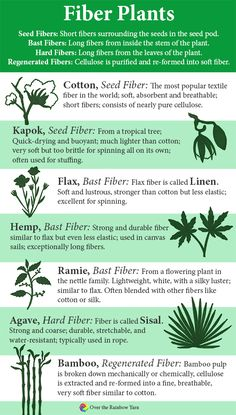 Common Types of Fiber Plants: Cotton, Kapok, Flax, Hemp, Ramie, Agave, Bamboo, from #yarnschool by Over the Rainbow Yarn.