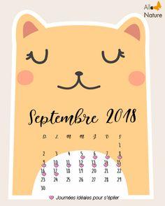 Calendrier Lunaire Septembre 2020 Rustica.9 Best Calendrier Lunaire D Epilation Images Company Logo