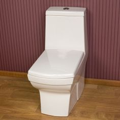 Maier Dual Flush European Rear Outlet Toilet Bathrooms