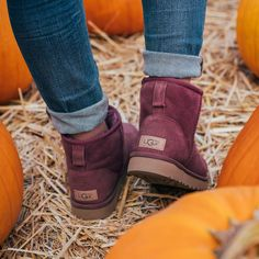 Best uggs black friday sale from our store online.Cheap ugg black friday sale with top quality.New Ugg boots outlet sale with clearance price. Ugg Boots Outfit, Ugg Shoes, Shoe Boots, Ankle Boots, Stilettos, Pumps, Uggs With Bows, Ugg Classic Tall, Outfit Invierno