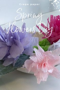 Let's bring some Spring feel into our home decor with crepe paper flowers. Super easy budget friendly 4 ways to bring some pop of color to your house Paper Flower Wreaths, Crepe Paper Flowers, Flower Crafts, Diy Flowers, Colorful Flowers, Spring Flowers, Tree Crafts, Paper Peonies, Budget Home Decorating
