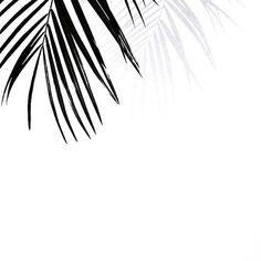 M i n i m a l i s m ✔️ #beautiful #regram  by @melissa.araujo ... #minimalistic #monochromestyle #minimal #monochrome #lifestyle #leafe #leafes #citylife #love #grey #white #black #mystyle #potd #pictureoftheday #details #littlethingsmakemehappy #latergram #fashion #fashionblog #inspo #weekend #happiness #minimalism #lackofcolor #instafashion #igfashion #instamood