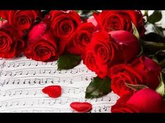 ▶ ★ 2 HOURS ★ Classical Music - Relaxing Mozart Music for Studying Concentration and Sleep - YouTube