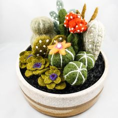 Your place to buy and sell all things handmade - Felted Cactus Garden OnceAgainSam, Etsy The Effective Pictures We Offer You About Cactus decoracio - Cute Crafts, Felt Crafts, Diy And Crafts, Arts And Crafts, Diy Laine, Mini Cactus, Cactus Cactus, Garden Cactus, Cactus Fabric