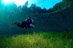森の中を泳げる?春の3ヶ月だけ現れる奇跡の「グリーンレイク」が不思議すぎる | RETRIP[リトリップ]