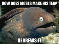 Prepare for lots of these!!!!! They are so funny!!!! Hebrews it.... hahahaha