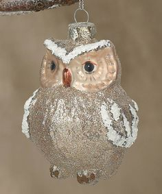 I love owls even at Christmas