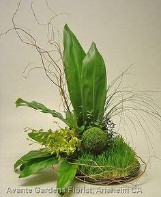moss floral arrangements | Green Arrangement featuring Wheat Grass