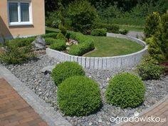 Murki oporowe - strona 8 - Forum ogrodnicze - Ogrodowisko