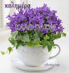 Greek Easter, Good Morning Quotes, Happy Easter, Herbs, Flowers, Spiritual, Motorbikes, Happy Easter Day, Herb