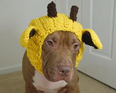 Giraffe Dog Snood Crochet Made to Order от courtanai на Etsy, $35.00
