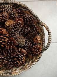 Image result for large pine cone christmas decorations