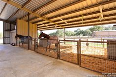 barndominium with horse stalls Horse Shelter, Horse Stables, Horse Farms, Horse Horse, Simple Horse Barns, Show Cattle Barn, Horse Barn Designs, Barn Stalls, Horse Barn Plans