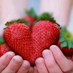 I bet this strawberry tasted extra sweet!  :p