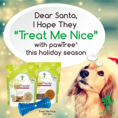 Animal Nutrition, Pet Nutrition, Healthy Pets, Cat Grooming, Pet Gifts, Dear Santa, Pet Care, Holiday Gifts, Your Pet