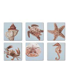 Another great find on #zulily! Creatures of the Sea Canvas - Set of Six #zulilyfinds