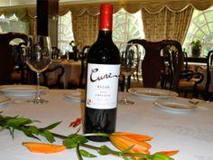 El vino y sus propiedades   http://moldeoideas.wordpress.com/2013/06/28/el-vino-y-sus-propiedades/