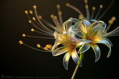 Posts à Beira Mar: As flores e borboletas inacreditáveis de Hairpins Japonês
