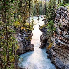 Living on the edge with @tiffpenguin at Athabasca Falls Jasper Alberta Canada. Photo by fellow AQ Ambassador @sinclair_photo #aqambassador #jasper #liveyourquest #waterproof #aquaquest