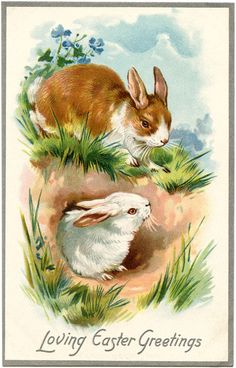 Loving Easter Greetings ~ vintage holiday greeting card with brown & white bunnies | from The Graphics Fairy