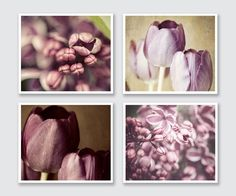 Purple Home Print or Canvas Wrap Set, Radiant Orchid Purple Flower Prints, Soft Lilacs Tulips, Pastel Purple Art, Purple Flower Pictures. by LisaRussoFineArt on Etsy https://www.etsy.com/listing/158809070/purple-home-print-or-canvas-wrap-set