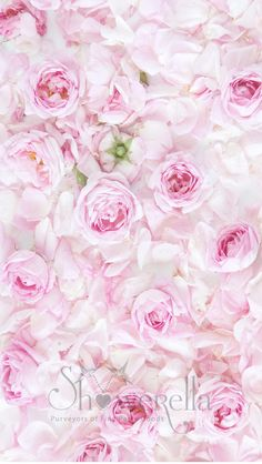 free-wallpaper-english-roses-iphone5-showerella.jpg (640×1136)