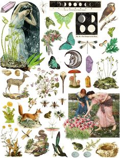 Hedge Witch Grimoire Printables Scrapbook Paper, Pagan Wiccan Junk Journal, Digital Collage Sheet, I Art Du Collage, Collage Sheet, Digital Collage, Images Victoriennes, Arte Indie, Hedge Witch, Unique Wall Art, Art Mural, Pics Art