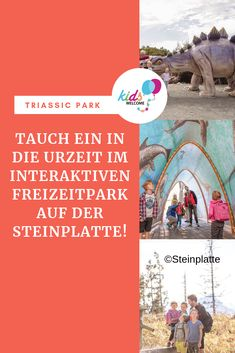 Steinplatte Triassic Park in Waidring Movies, Kids, Movie Posters, Holiday On A Farm, Traveling With Baby, Holiday Travel, Young Children, Boys, Films