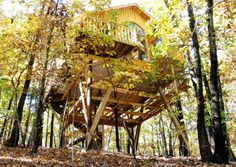 The Original Treehouse Cottages, Arkansas - America's Wildest Hotels