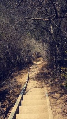 Murphy Ranch Trail #stairs