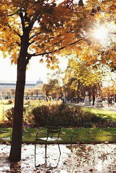 Autumn in Jardin des Tuileries  Paris, photo taken November 12, 2013, Carin Olsson