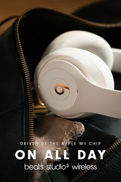 38 best bosses images beats by dre accounting humor chistes rh pinterest com