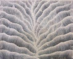 Art aborigène - Noor Arts: Peintures