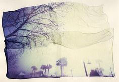 just getting into the fun of Polaroid and what can be done with it [foggy cedar key - Polaroid Emulsion Lift] Fine Art Photography, Photography Ideas, Like A Storm, Alternative Photography, Experimental Photography, Days Of The Year, Coastal Living, More Pictures, Watercolor Paper