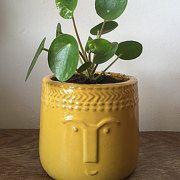 Cactus&succulent planters van EmanaPlants op Etsy