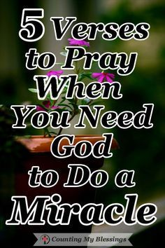Prayer quotes:We receive so many prayer requests from people who need a miracle. If you are someone who needs God to do the impossible, these verses and prayers will help you go to God and ask Him for help. #Prayer #Needamiracle #Hope #BibleStudy #SeekGodFirst