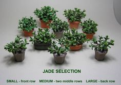 Dollhouse Miniature Jade plants by 2015 IGMA Fellow Carolyn Mohler Kraft