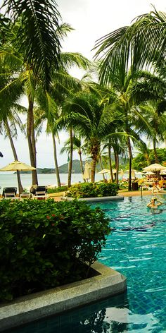 Centara Grand Beach Resort Samui is a top quality resort with a wide range of facilities within the development. There is large swimming pool, with a children pool.
