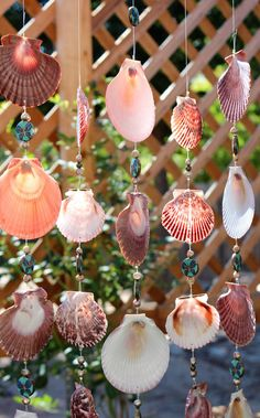Sea Shell Wind Chimes, Beach Decor, Driftwood Seashell Wind Chimes, Wind Chimes…