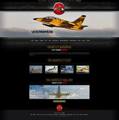 An Intriguing and Engaging Web Design by VisionFriendly.com Illinois, Aircraft, Web Design, Website, Gallery, Aviation, Design Web, Roof Rack, Plane