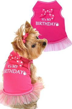 It's My Birthday - let's celebrate! Your furry child will look amazing and festive at their party in this adorable hot pink tank! Attached tutu adds an extra flair of girlie charm - so fun! Machine wa