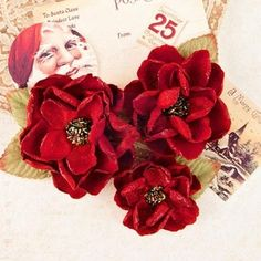 Prima > A Victorian Christmas > Peace & Holly Mulberry Paper Flowers - A Victorian Christmas - Prima - PRE ORDER: A Cherry On Top (3) X 4