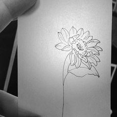 Sunflower kiss •
