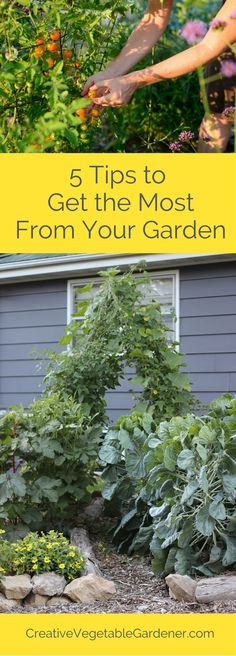 Discover readers' favorite gardening tips of the year!
