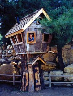 rustic tree house, reminds me of the crooked house at Bush Park