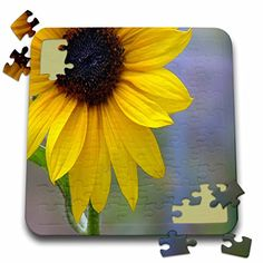 Jos Fauxtographee Realistic - A Bright Yellow Sun Flower up Close With Lots of Texture in the Center and Blues in the Background - 10x10 Inch Puzzle (pzl_48267_2) 3dRose http://www.amazon.com/dp/B016EBLXKE/ref=cm_sw_r_pi_dp_YDq2wb1XV9E8Z