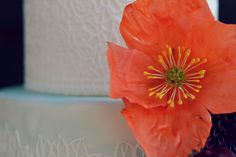 Sugar poppy detail. Wedding cake, sugar flowers. Country Cake Shop Cake Shop, Sugar Flowers, Custom Cakes, Poppy, Wedding Cakes, Romantic, Country, Detail, Plants