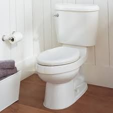 TOILET BOWL CLEANER: Mix 1/4 cup borax or baking soda and 1 cup vinegar in the toilet. Let it sit for 15 minutes (or longer, if necessary), scrub, and flush.